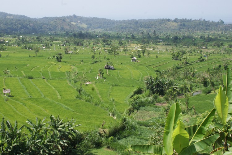 Landschap Indonesië