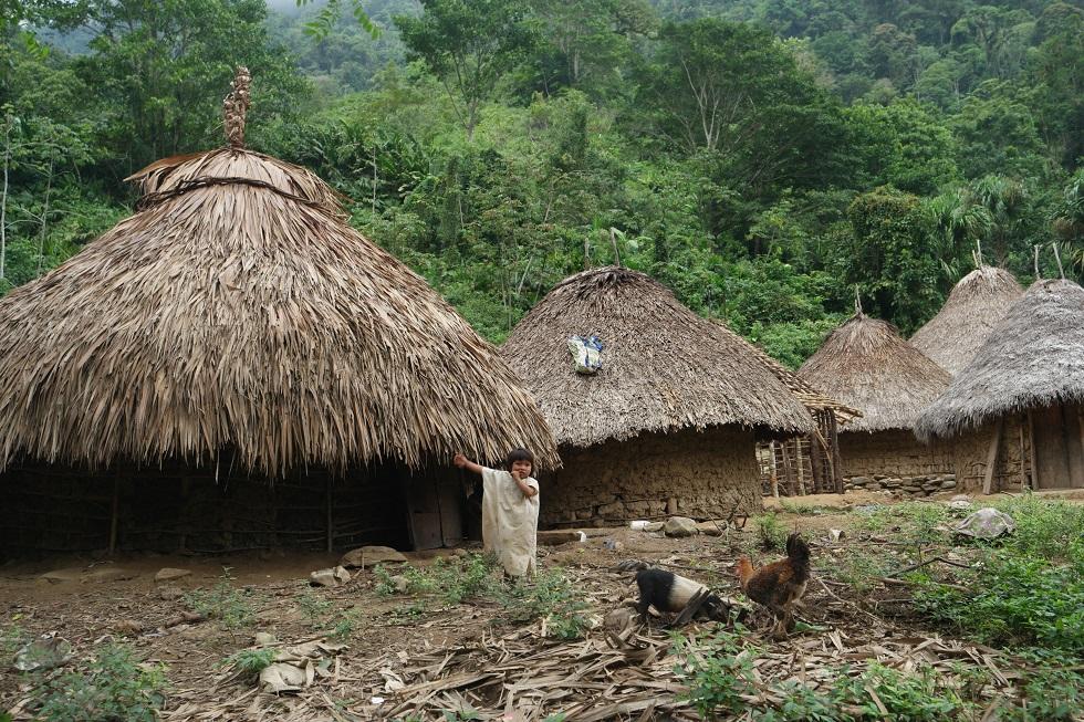 Tairona dorp Ciudad Perdida