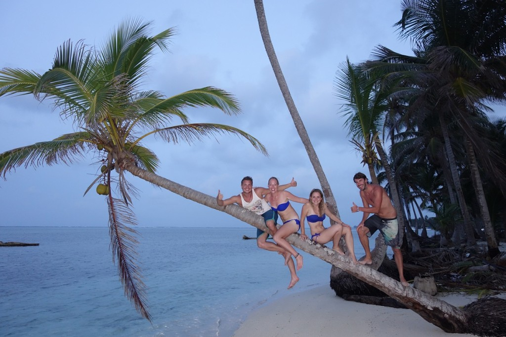 Palmbomen San Blas klimmen