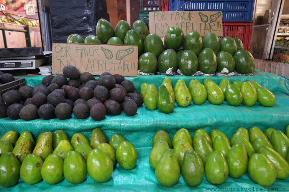 avocado Colombia Aguacate