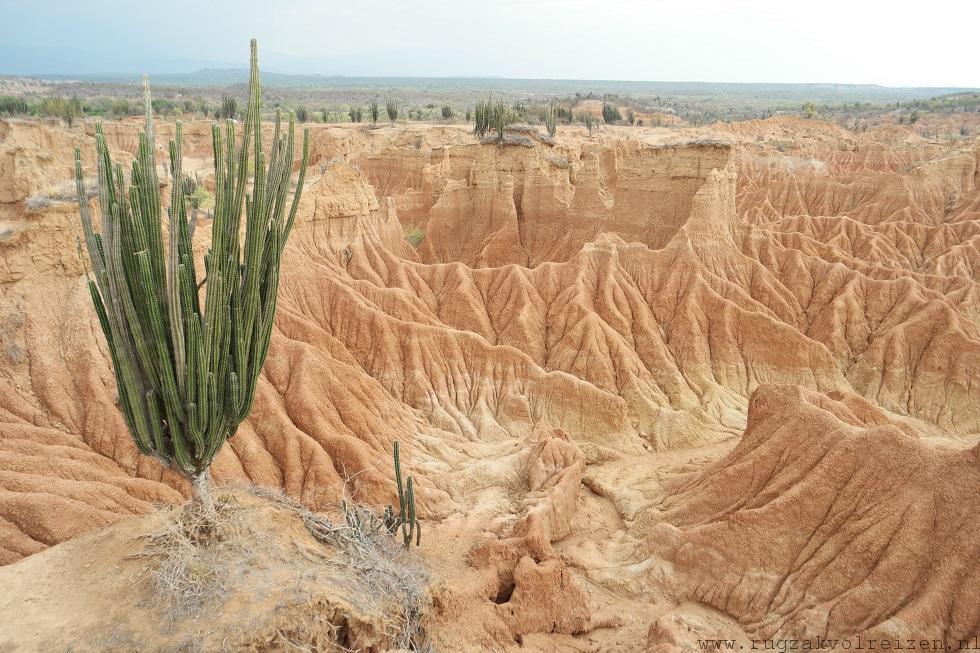 desierto tatacoa woestijn Colombia