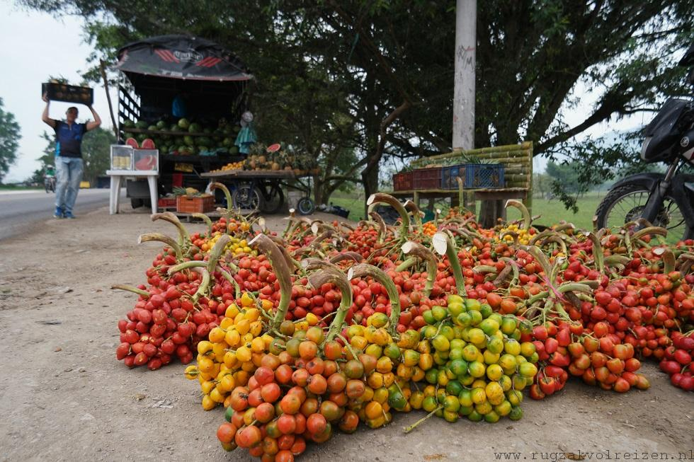 fruitsoorten Colombia tomates de arbol