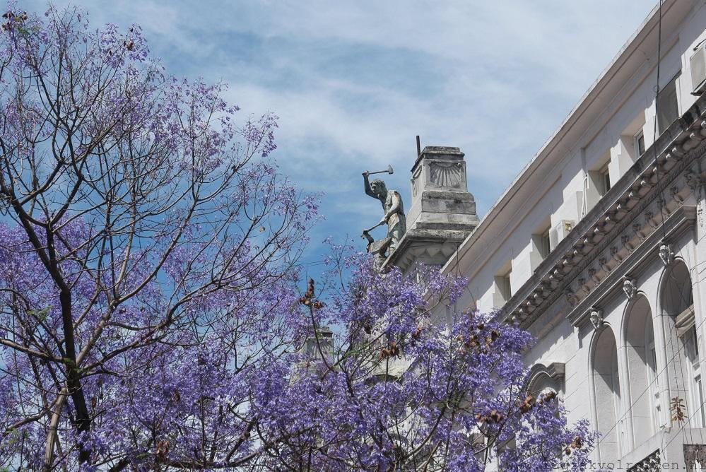 Lente in Buenos Aires
