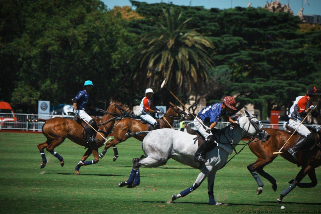 Polo wedstrijd Buenos Aires