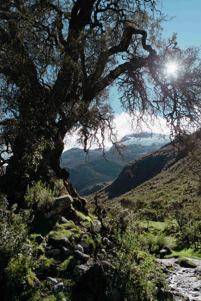 Laguna 69 hike Peru