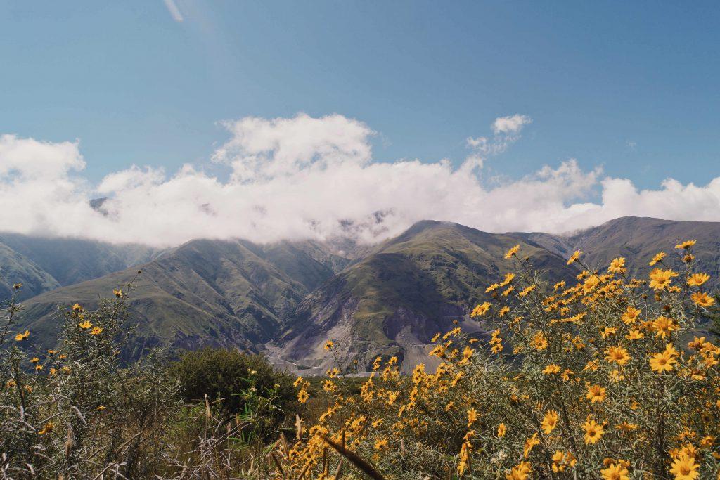 Bergen - Roadtrip Salta en Jujuy